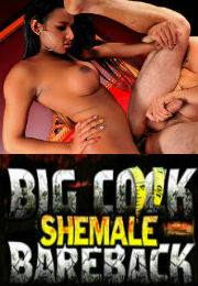 Big Cock Shemale Bareback